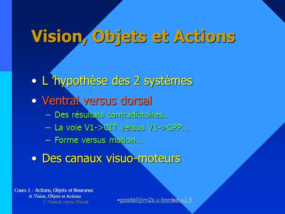 Vision, Objets et Actions