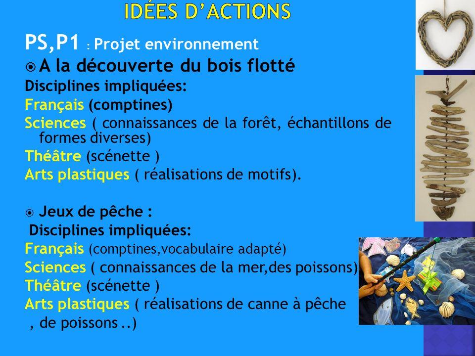 PS,P1 : Projet environnement