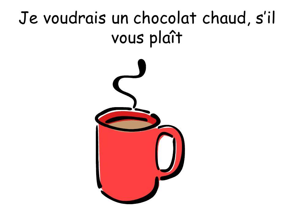 Je voudrais un chocolat chaud, s'il vous plaît