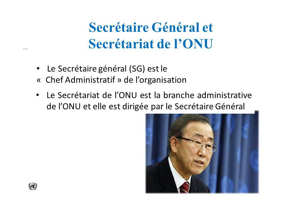 Secrétaire Général et Secrétariat de l'ONU