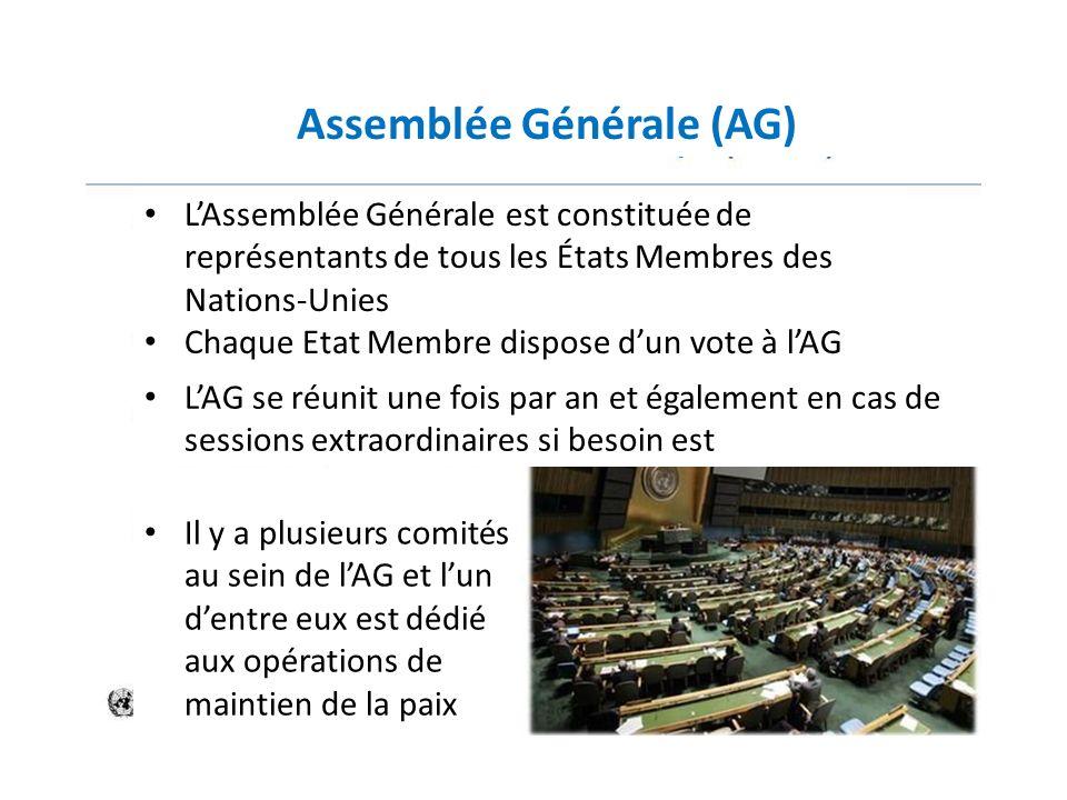 Assemblée Générale (AG)