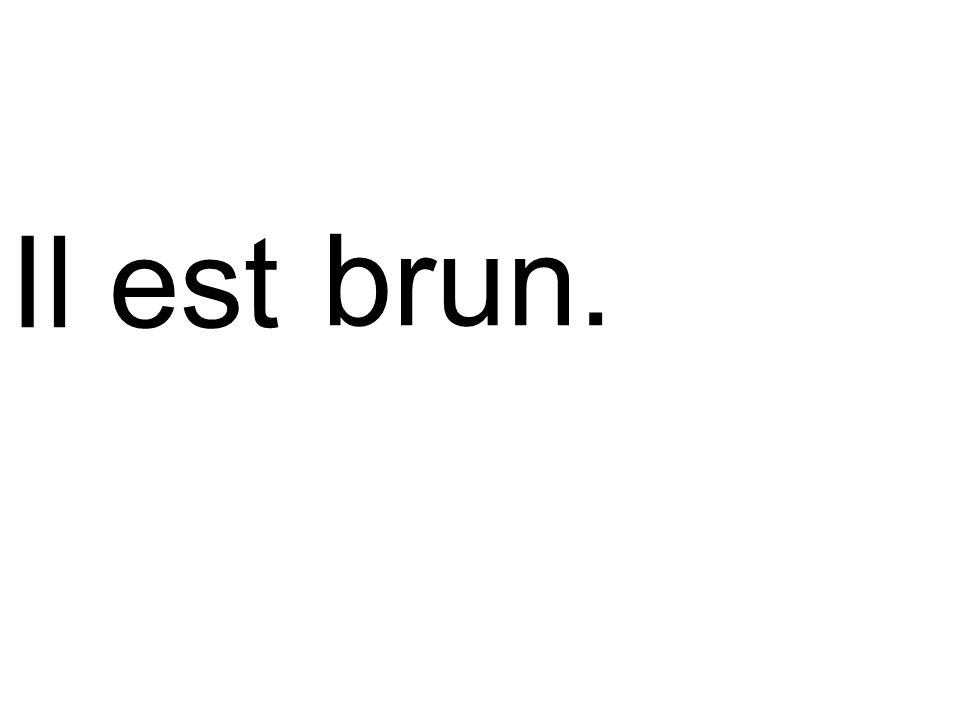 Il est brun.