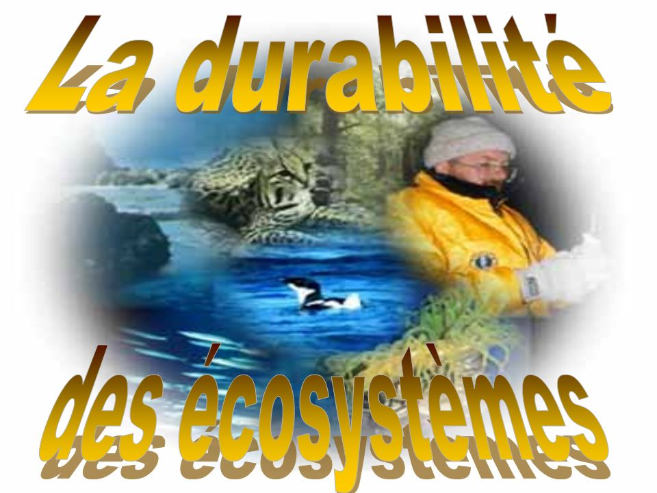 La durabilité des écosystèmes