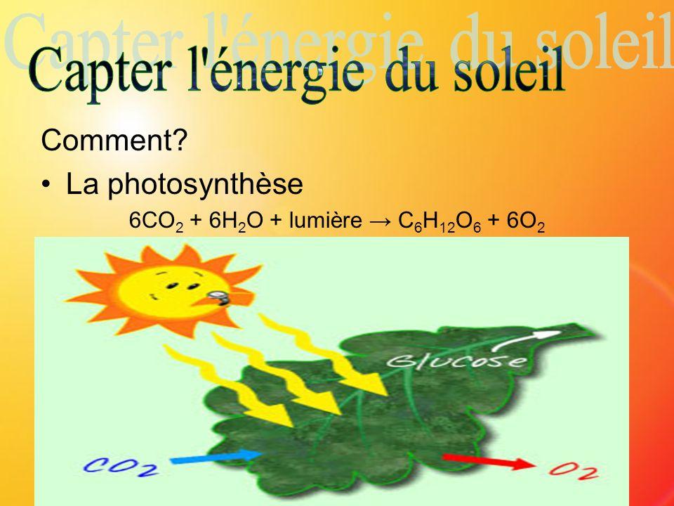 Capter l énergie du soleil