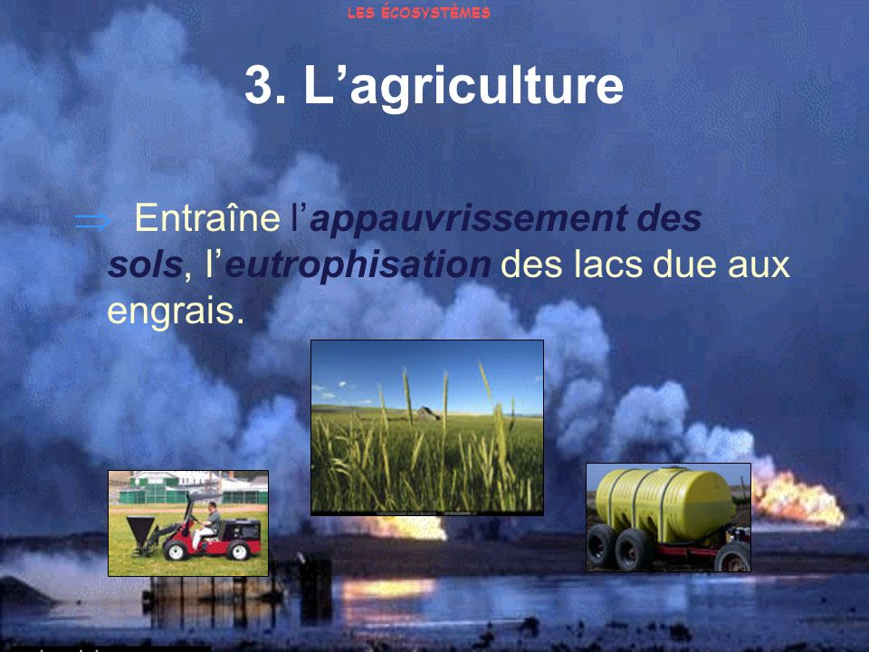 LES ÉCOSYSTÈMES 3. L'agriculture.