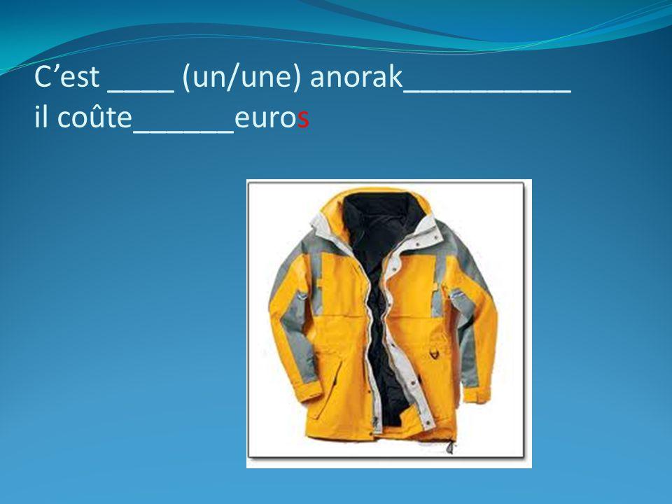 C'est ____ (un/une) anorak__________ il coûte______euros