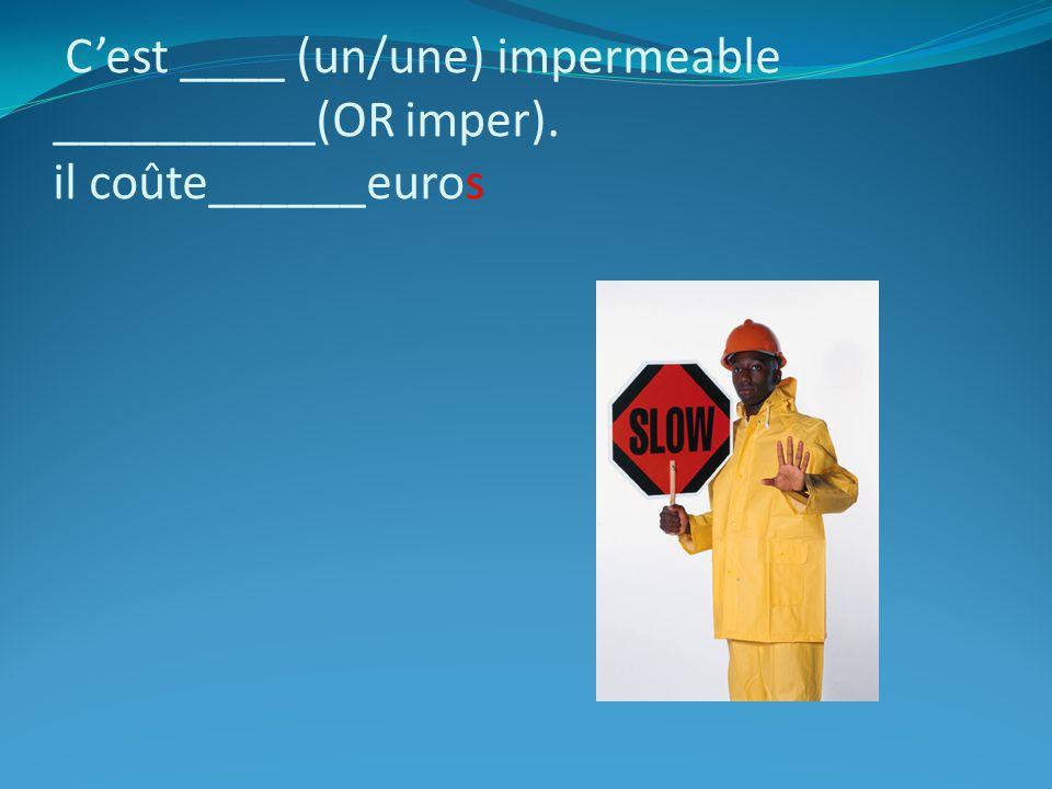 C'est ____ (un/une) impermeable __________(OR imper)
