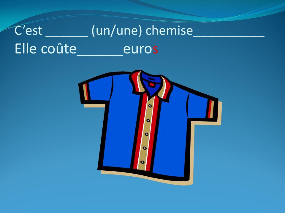 C'est ______ (un/une) chemise__________ Elle coûte______euros
