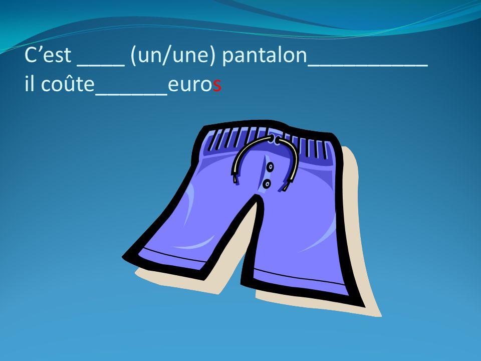C'est ____ (un/une) pantalon__________ il coûte______euros