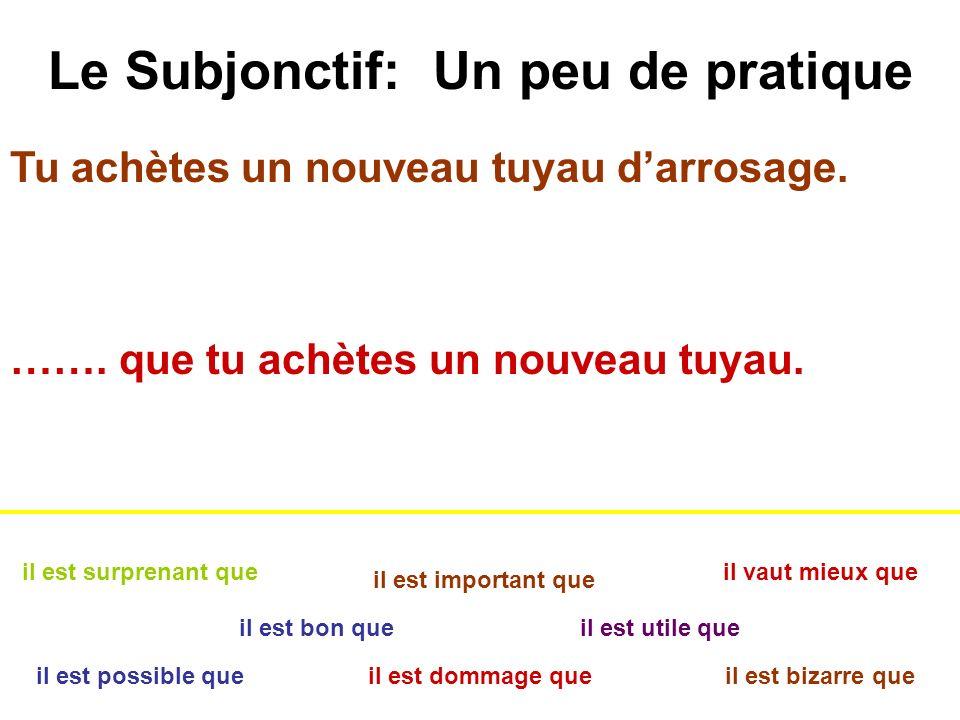 Le Subjonctif: Un peu de pratique