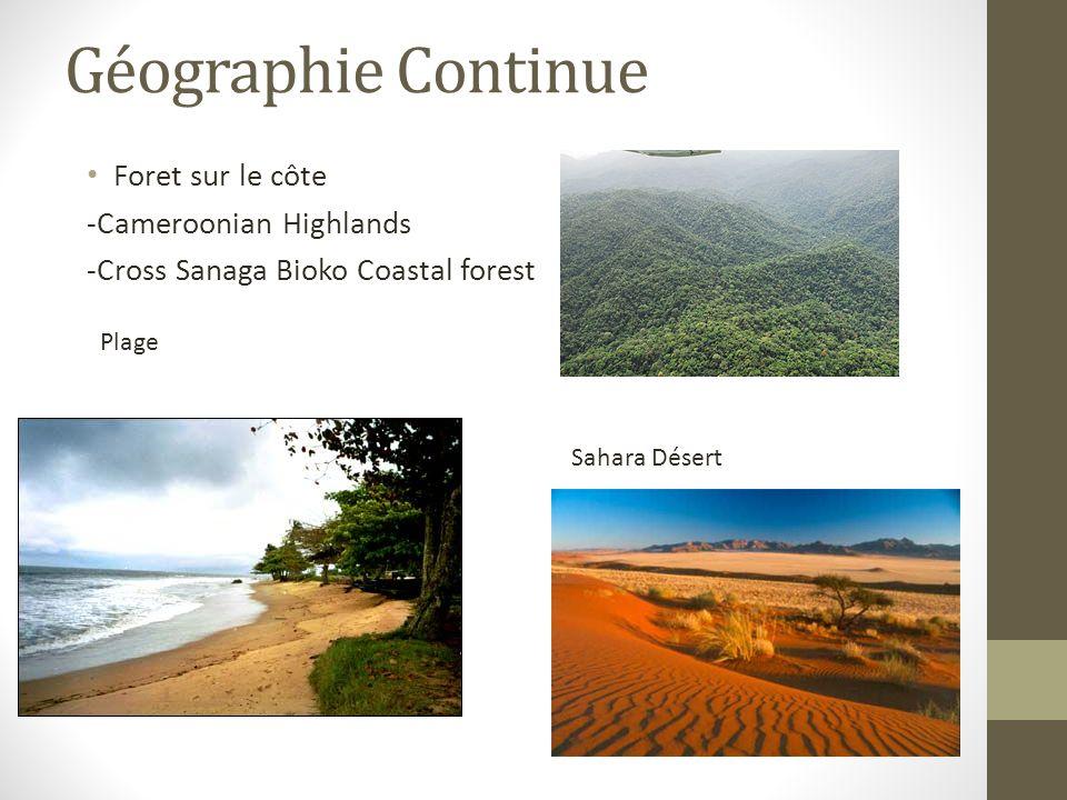 Géographie Continue Foret sur le côte -Cameroonian Highlands