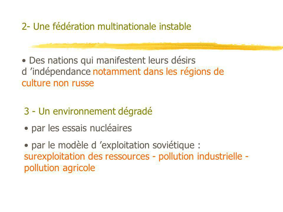 2- Une fédération multinationale instable