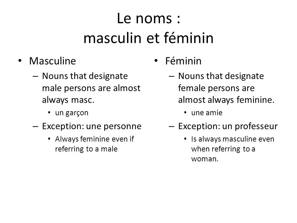 Le noms : masculin et féminin