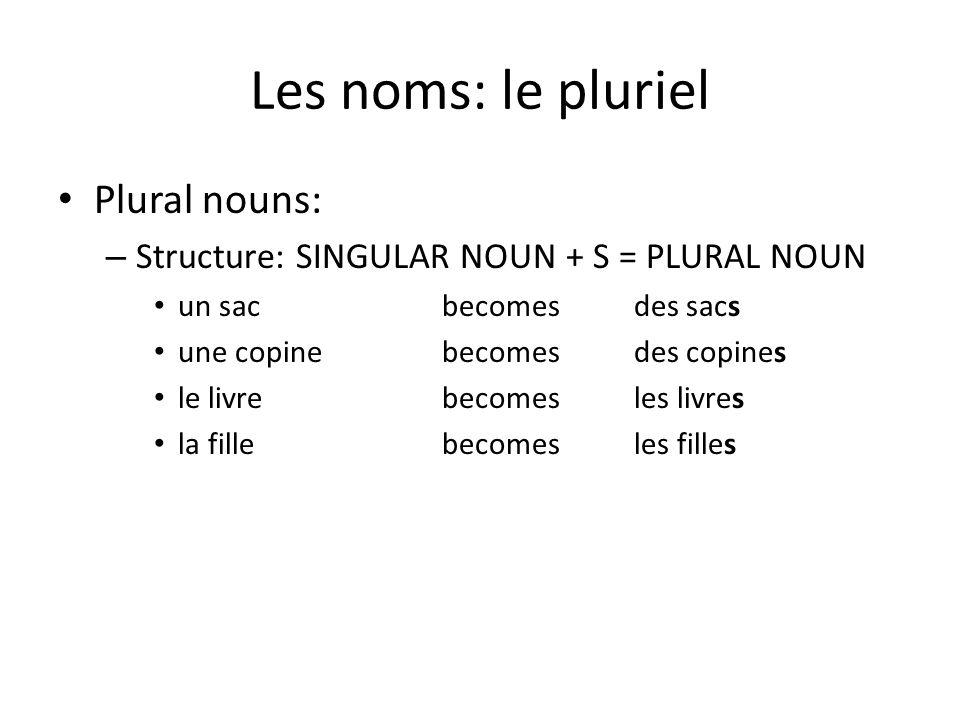 Les noms: le pluriel Plural nouns:
