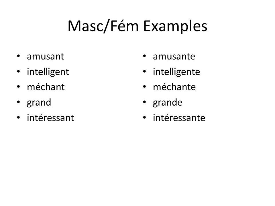 Masc/Fém Examples amusant intelligent méchant grand intéressant