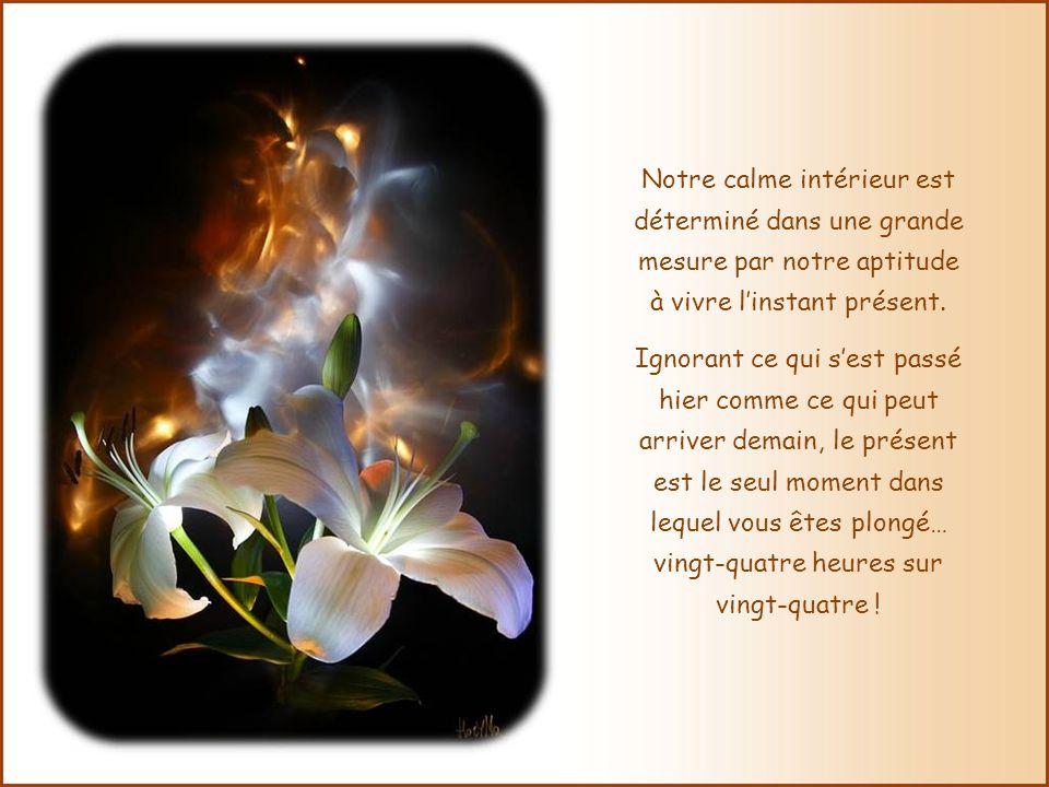Notre calme intérieur est déterminé dans une grande mesure par notre aptitude à vivre l'instant présent.
