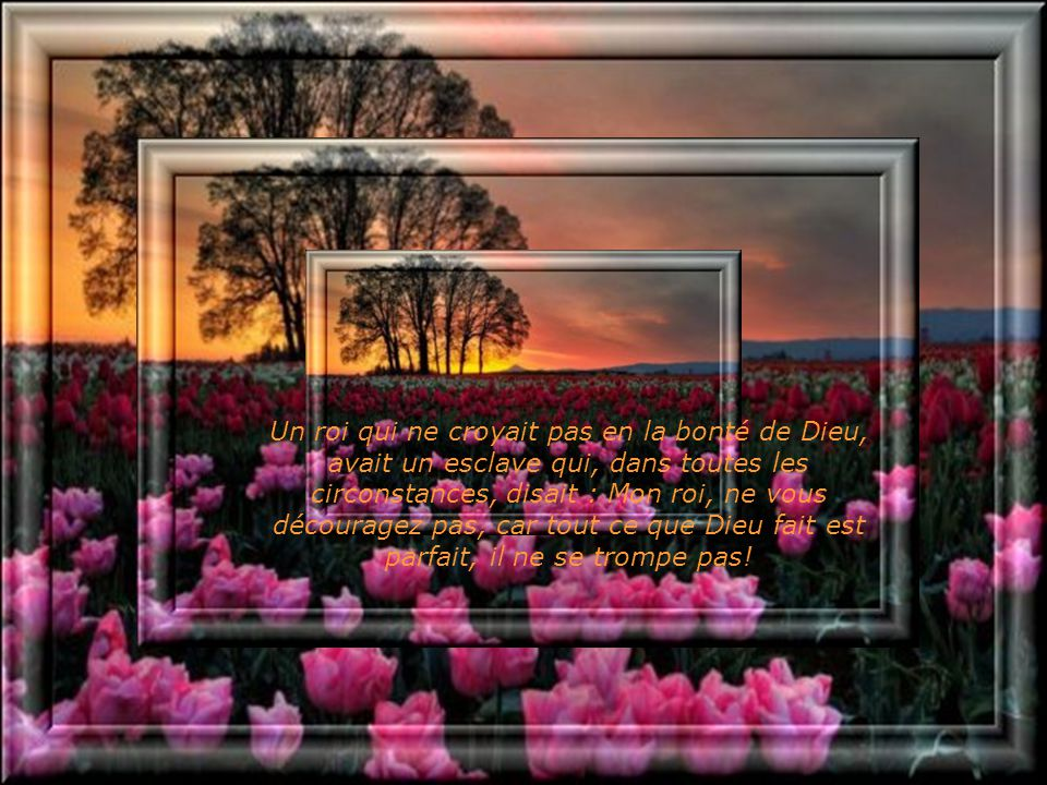 Un roi qui ne croyait pas en la bonté de Dieu, avait un esclave qui, dans toutes les circonstances, disait : Mon roi, ne vous découragez pas, car tout ce que Dieu fait est parfait, il ne se trompe pas!