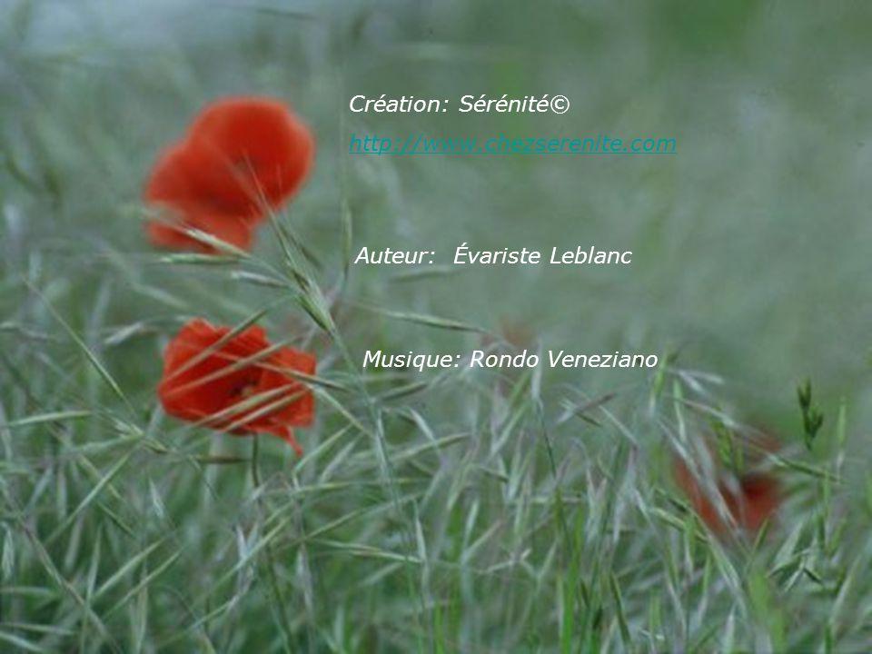 Création: Sérénité© http://www.chezserenite.com Auteur: Évariste Leblanc Musique: Rondo Veneziano