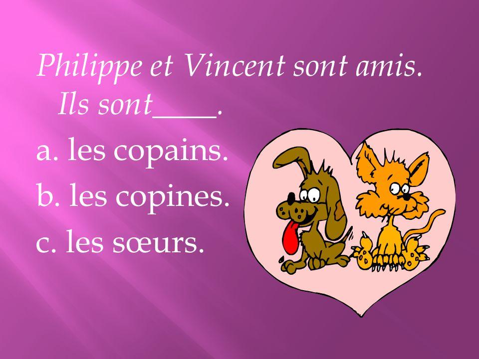 Philippe et Vincent sont amis. Ils sont____. a. les copains. b