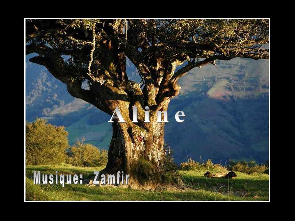 Aline Musique: Zamfir