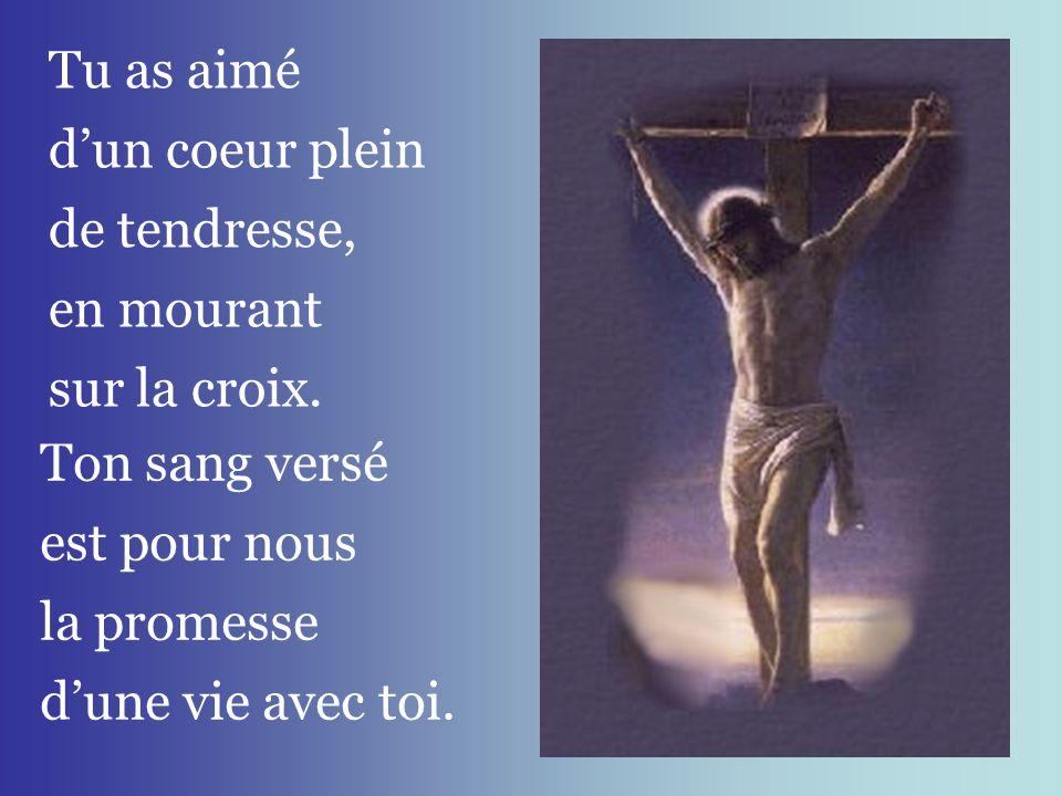 Tu as aimé d'un coeur plein. de tendresse, en mourant. sur la croix. Ton sang versé. est pour nous.