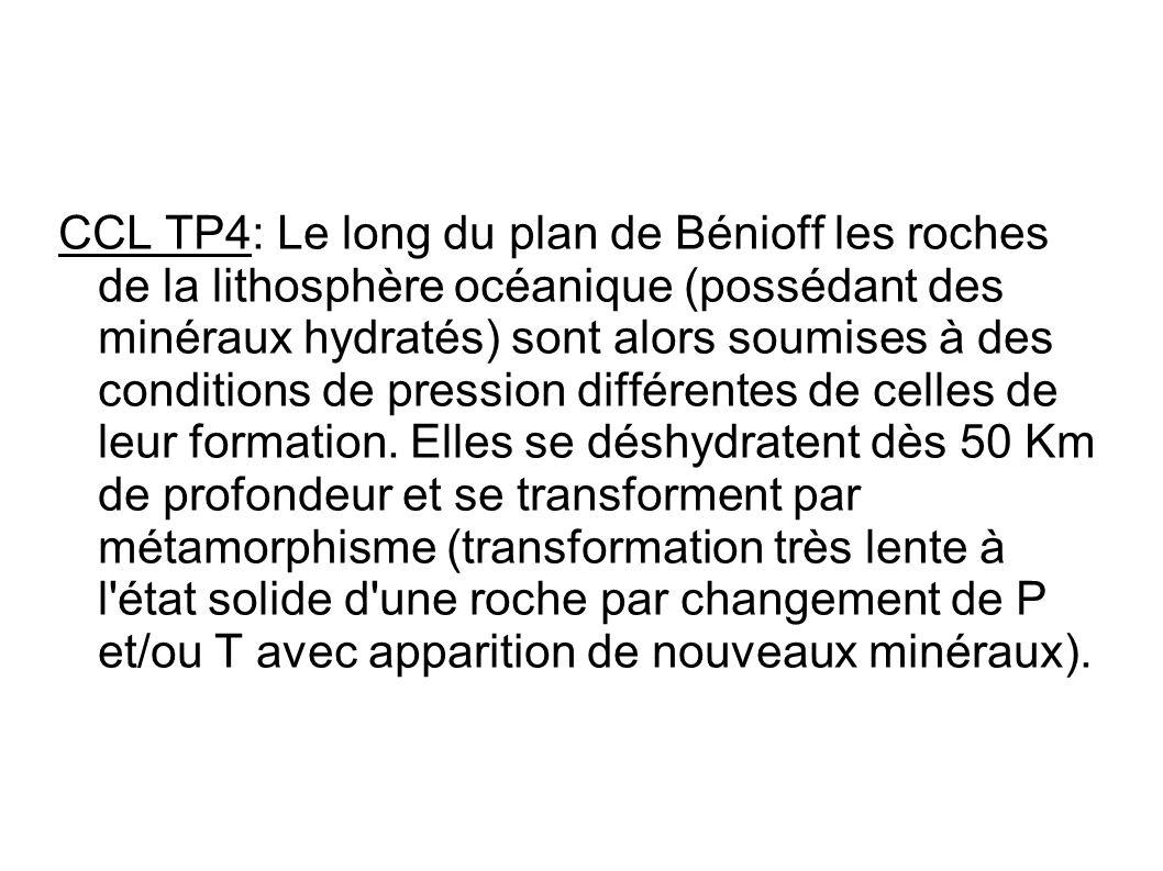 CCL TP4: Le long du plan de Bénioff les roches de la lithosphère océanique (possédant des minéraux hydratés) sont alors soumises à des conditions de pression différentes de celles de leur formation.