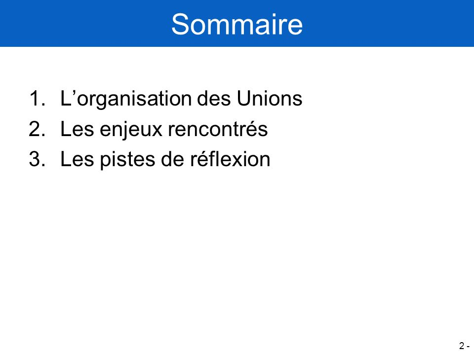 Sommaire L'organisation des Unions Les enjeux rencontrés