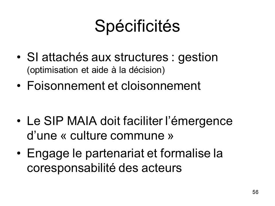 Spécificités SI attachés aux structures : gestion (optimisation et aide à la décision) Foisonnement et cloisonnement.
