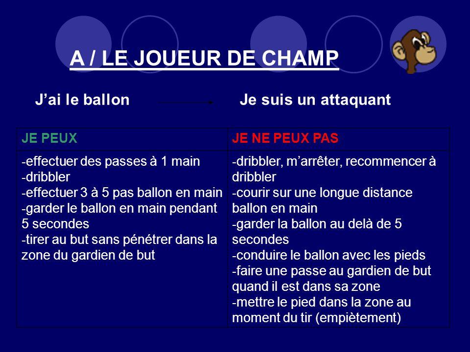 A / LE JOUEUR DE CHAMP JE PEUX JE NE PEUX PAS