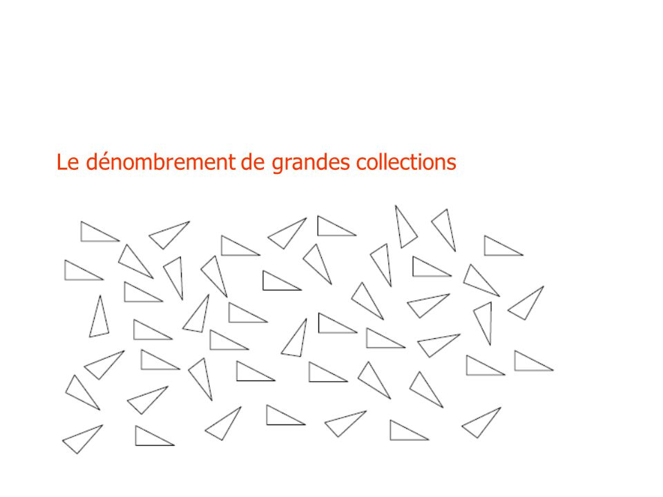 Le dénombrement de grandes collections