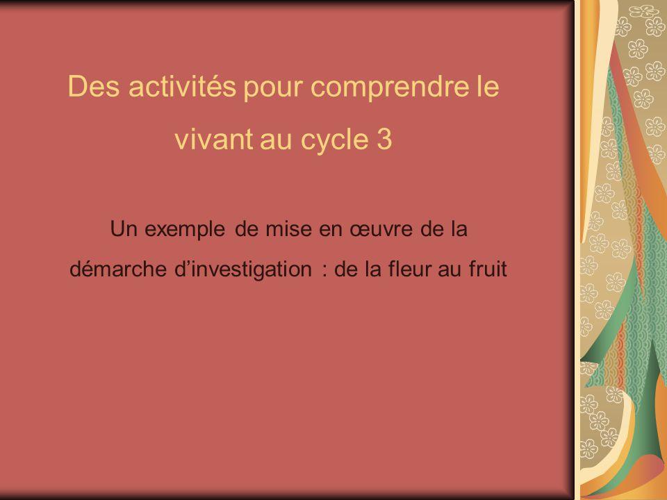 Des activités pour comprendre le vivant au cycle 3