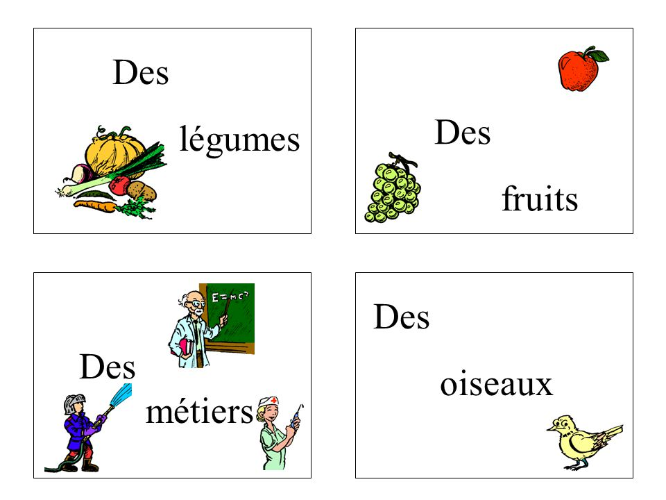 Des légumes Des fruits Des oiseaux Des métiers