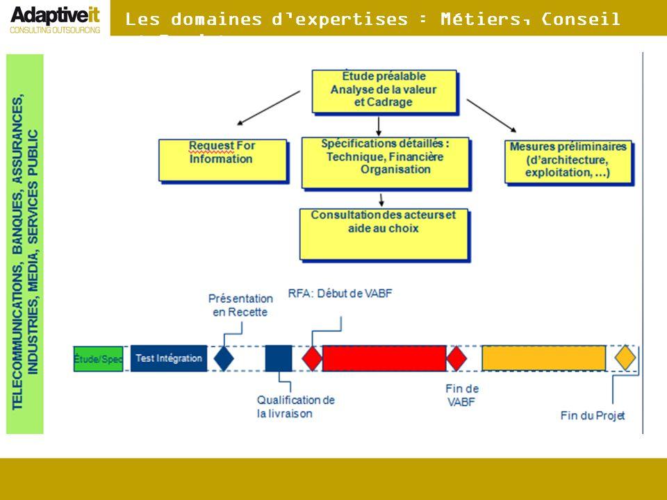 Les domaines d'expertises : Métiers, Conseil et Projet