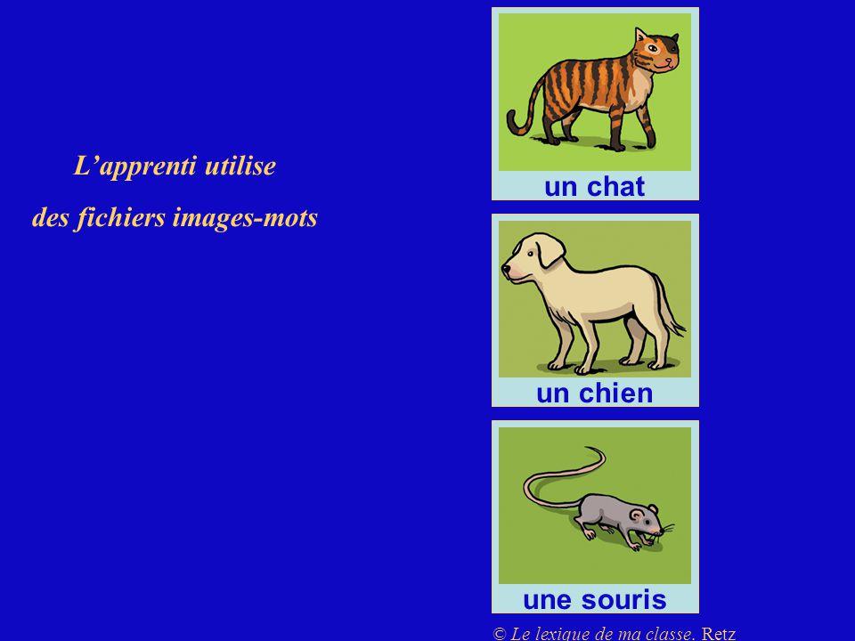 des fichiers images-mots