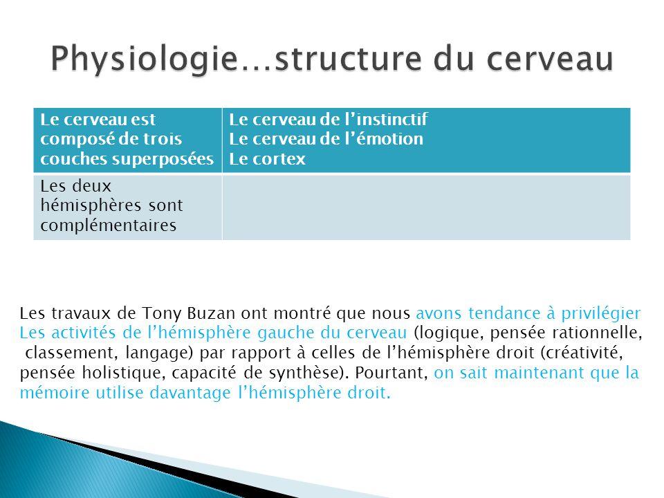 Physiologie…structure du cerveau