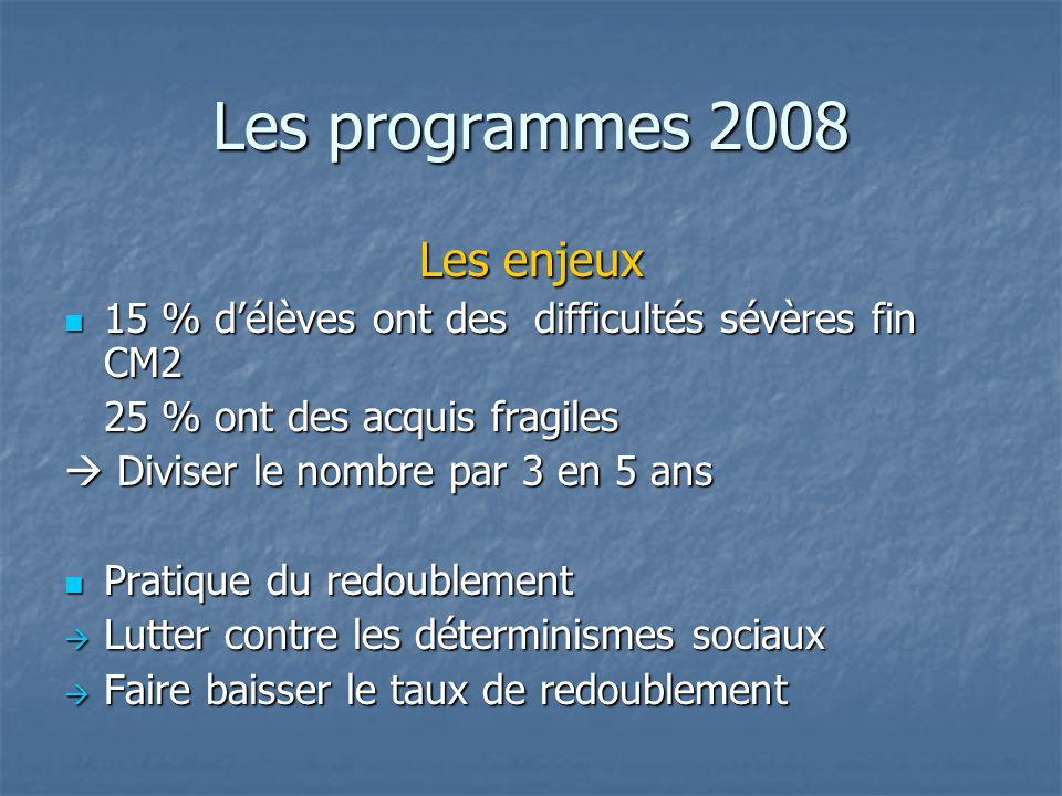 Les programmes 2008 Les enjeux