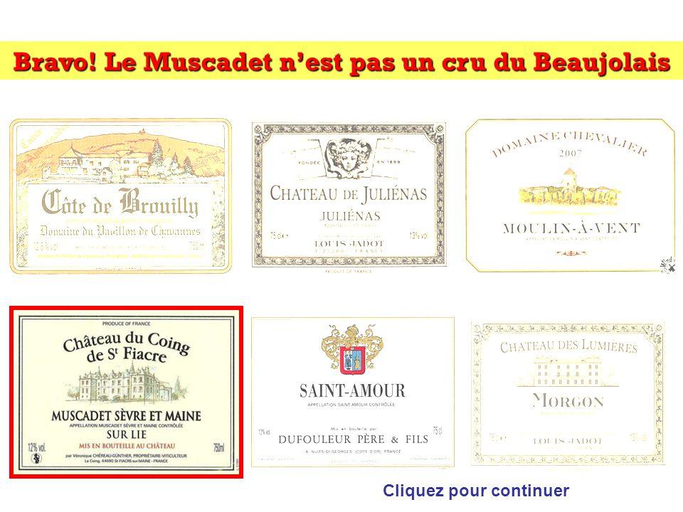 Bravo! Le Muscadet n'est pas un cru du Beaujolais