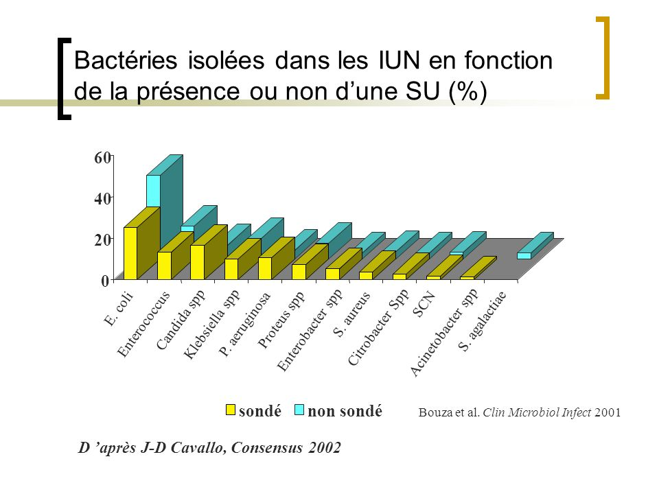 Bactéries isolées dans les IUN en fonction de la présence ou non d'une SU (%)