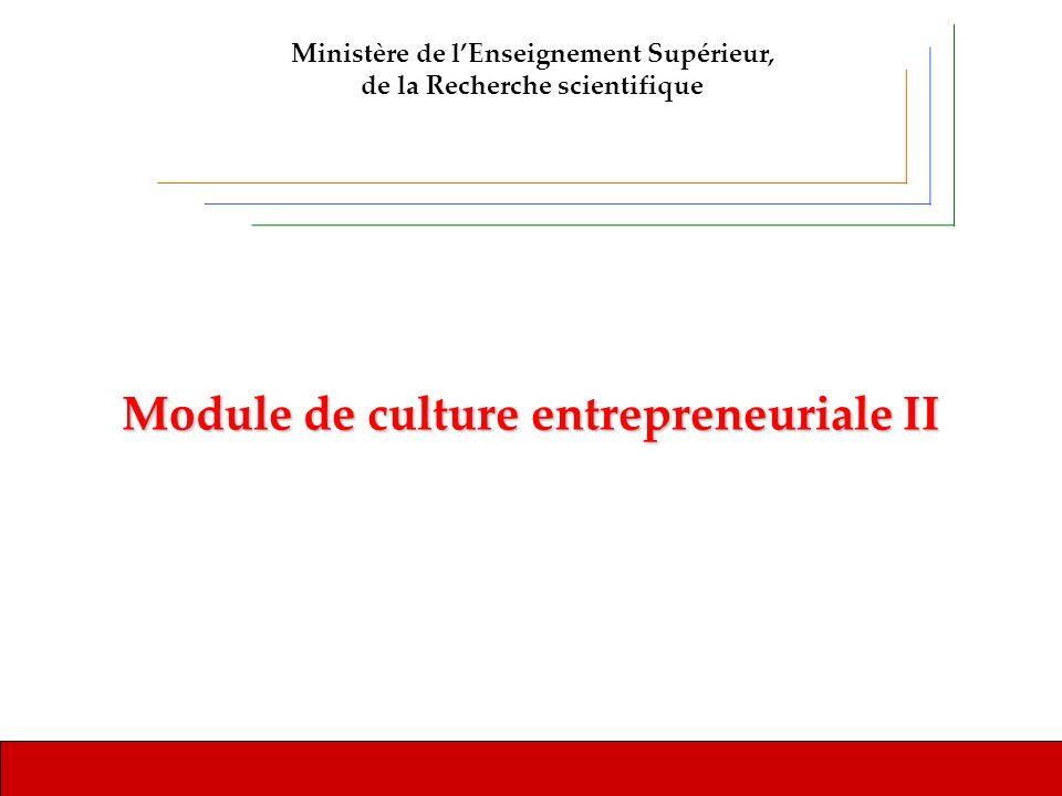 Module de culture entrepreneuriale II