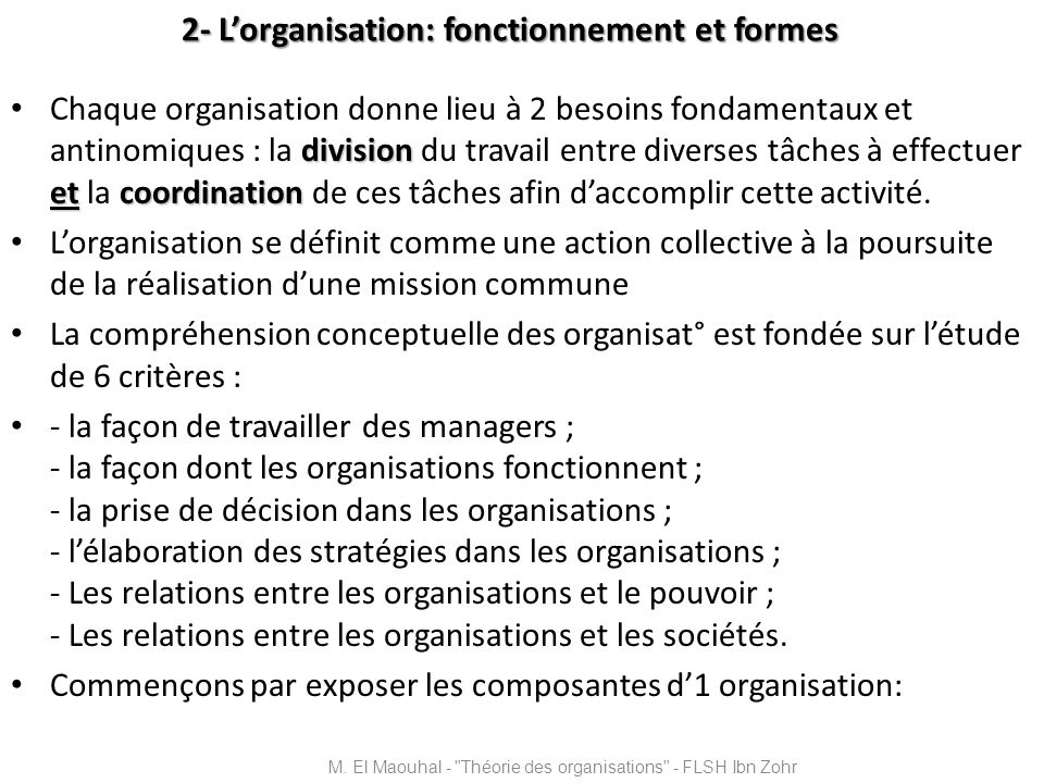 2- L'organisation: fonctionnement et formes
