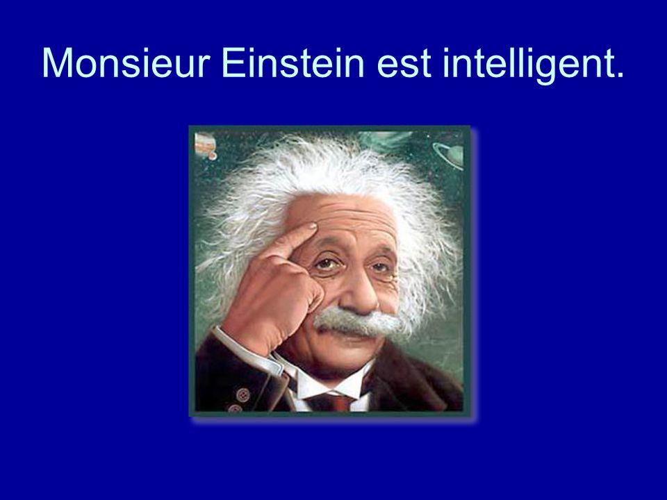 Monsieur Einstein est intelligent.