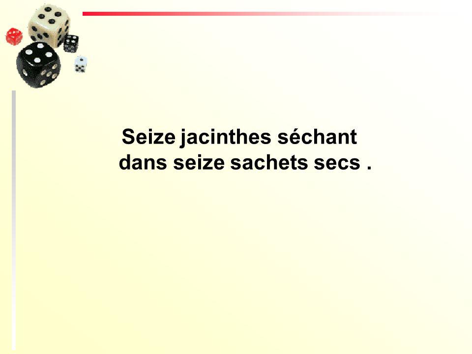 Seize jacinthes séchant dans seize sachets secs .
