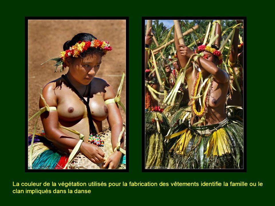La couleur de la végétation utilisés pour la fabrication des vêtements identifie la famille ou le clan impliqués dans la danse