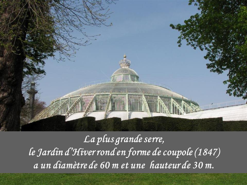 La plus grande serre, le Jardin d'Hiver rond en forme de coupole (1847) a un diamètre de 60 m et une hauteur de 30 m.