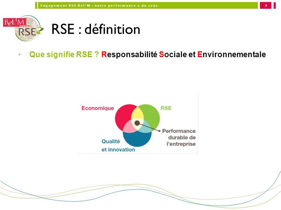 RSE : définition Que signifie RSE Responsabilité Sociale et Environnementale