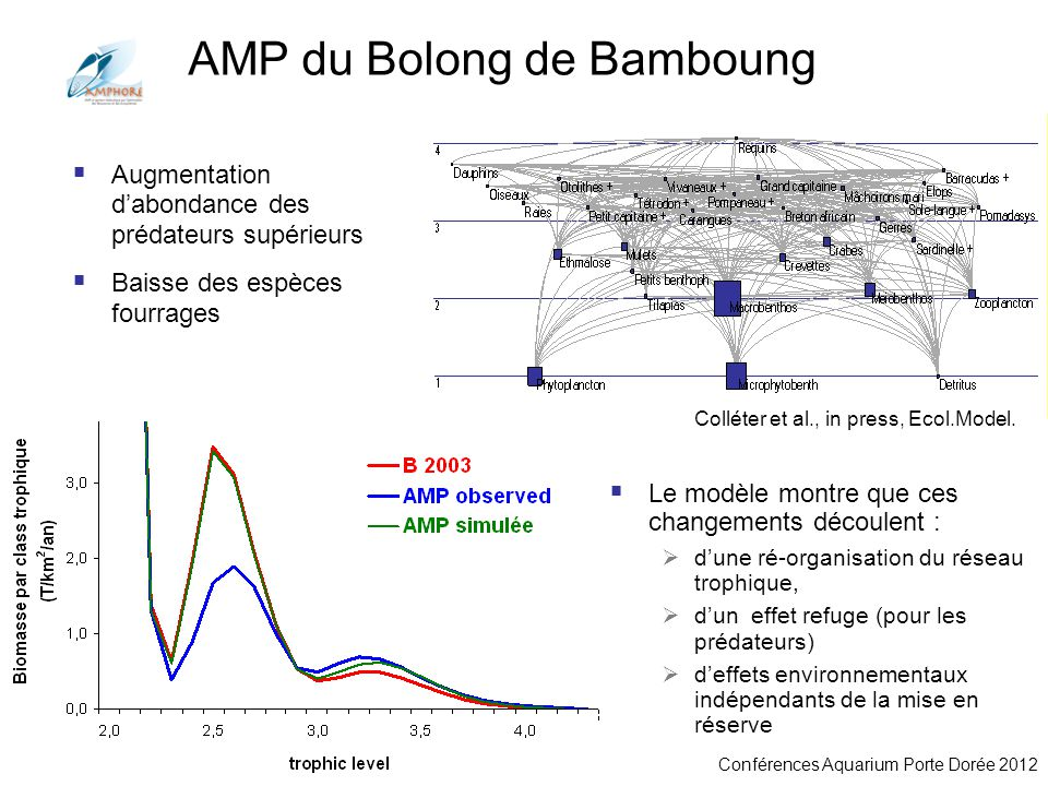 AMP du Bolong de Bamboung