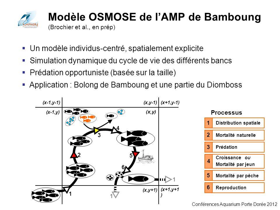 Modèle OSMOSE de l'AMP de Bamboung (Brochier et al., en prép)