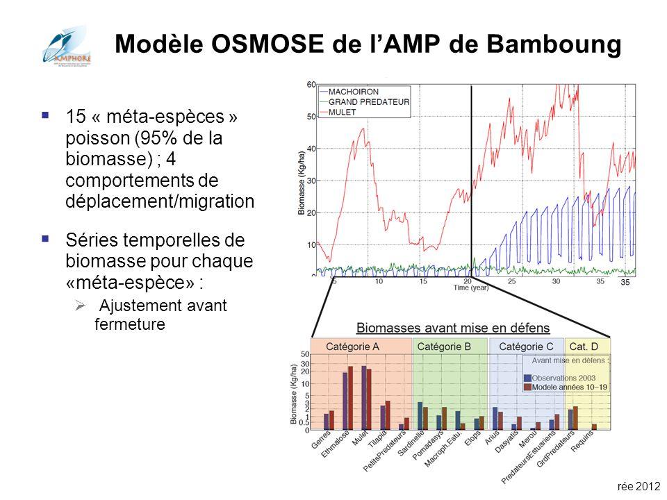 Modèle OSMOSE de l'AMP de Bamboung