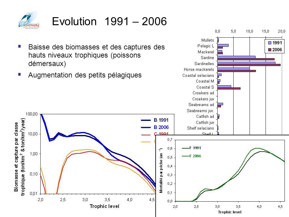 Evolution 1991 – 2006 Baisse des biomasses et des captures des hauts niveaux trophiques (poissons démersaux)