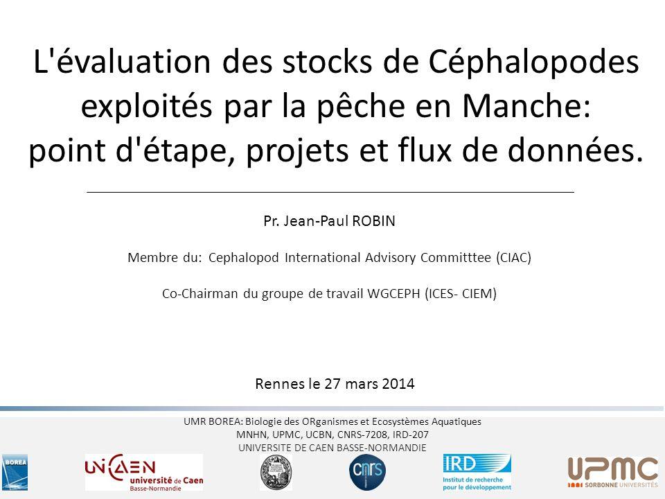 L évaluation des stocks de Céphalopodes exploités par la pêche en Manche: point d étape, projets et flux de données.